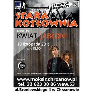 Koncert zespołu Kwiat Jabłoni