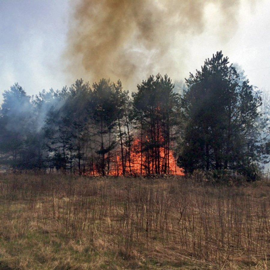 Za większość pożarów odpowiedzialny jest człowiek