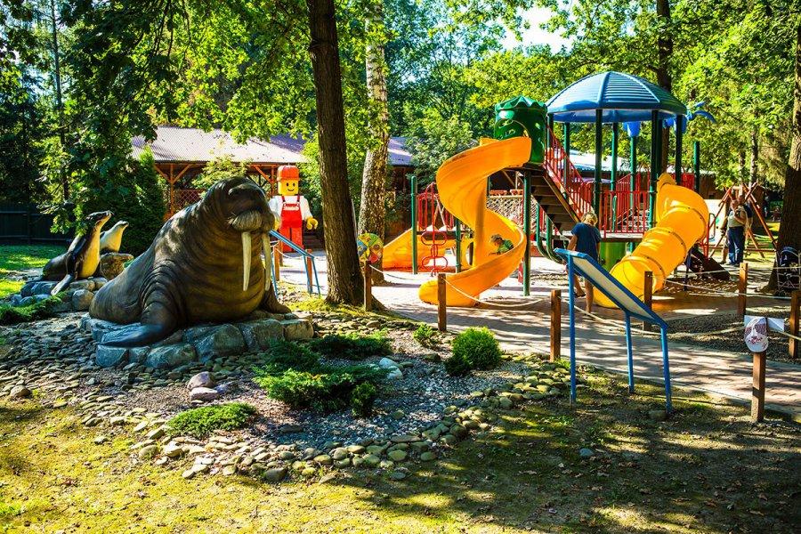 Zatorland – miejsce na wakacyjną przygodę Twojego dziecka