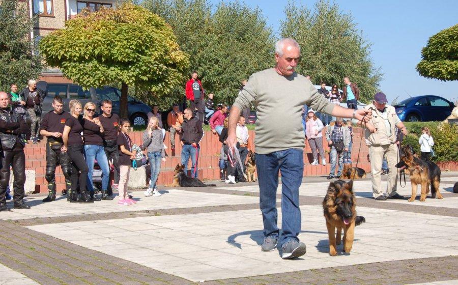 Motocykliści i hodowcy psów wsparli chorego Dominika