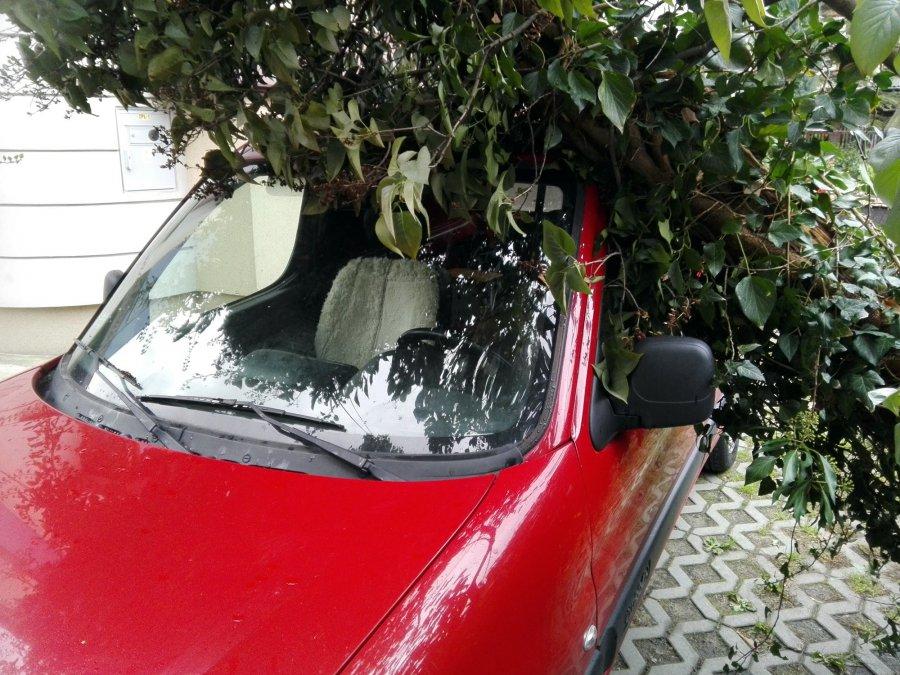 Wichura połamała drzewa. Słup spadł na samochód.