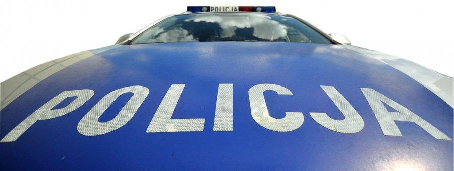 Skradzione auto złodzieje ukryli między drzewami
