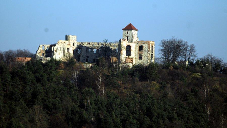 Ambitny plan dalszego ratowania zamku Tenczyn