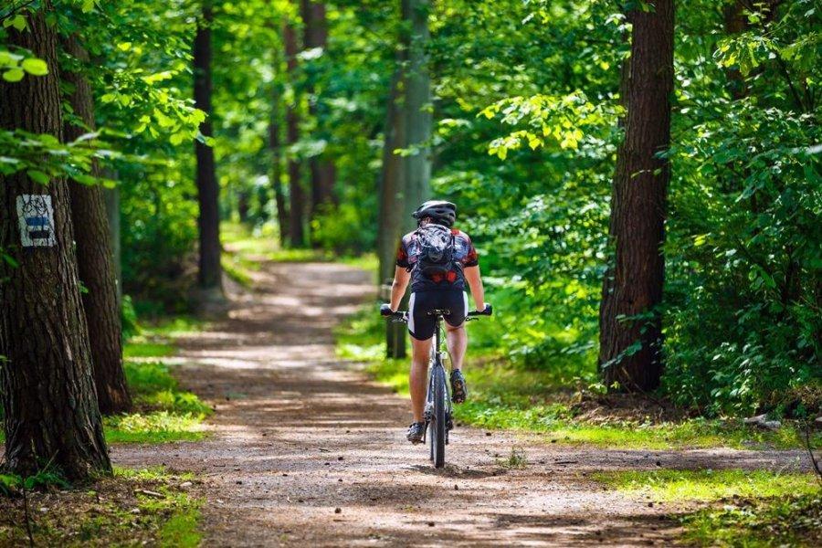 Wsiadajcie na rowery. W Małopolsce są świetne trasy, rajdy i wyścigi