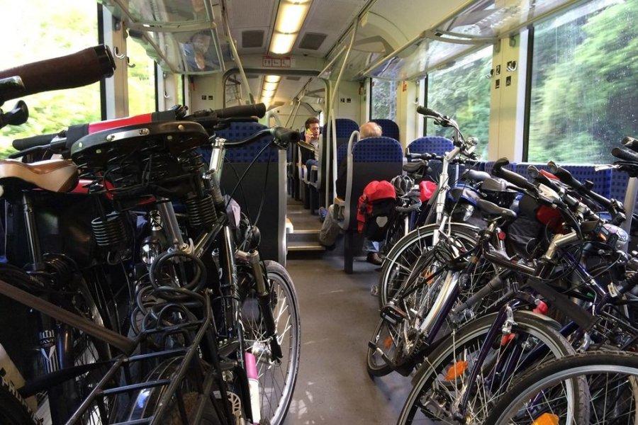 Rowerową przejażdżkę opłaca się rozpocząć w pociągu