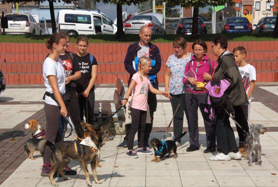 Psie sztuczki w Libiążu (WIDEO)