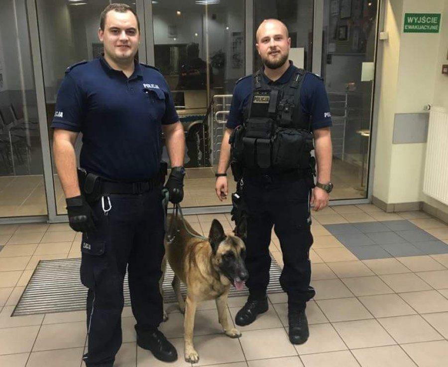 Policjanci doprowadzili psa na komendę