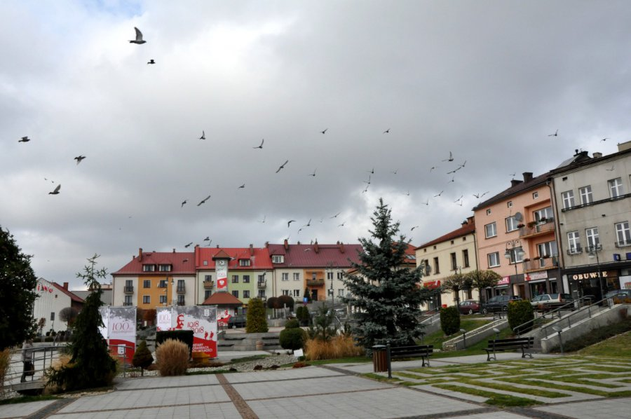Zmiana rządów w Trzebini