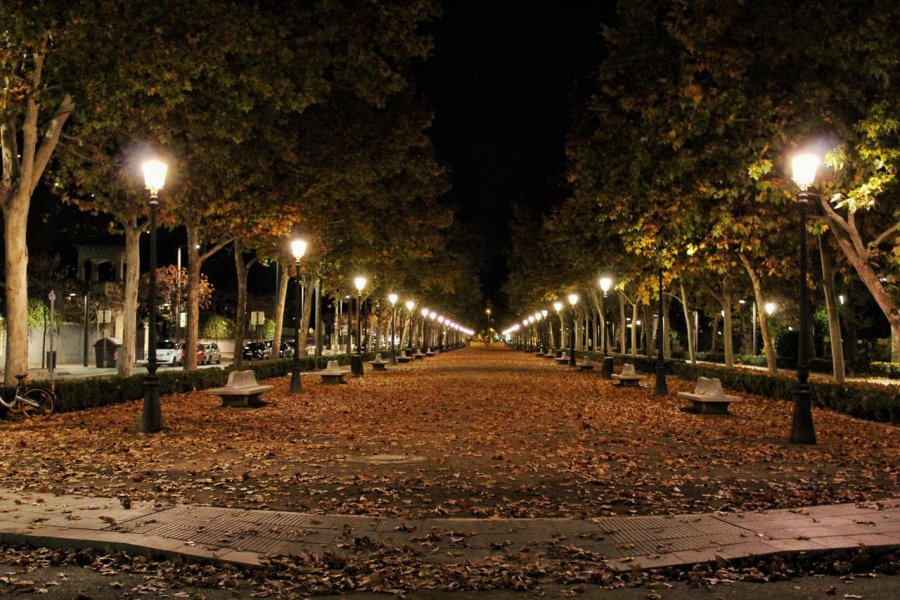 Lampy Parkowe Led Nowoczesność W Miejskim Parku Przelom