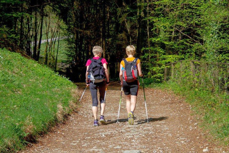 Miłośników chodzenia z kijkami czeka pięć marszów