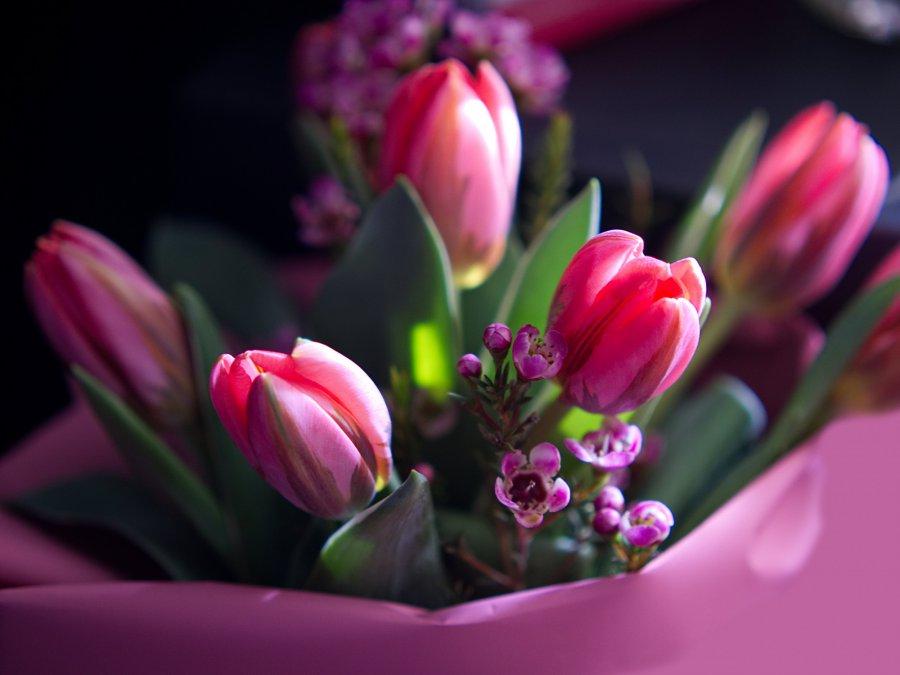 Kwiaty z dowozem w Krakowie