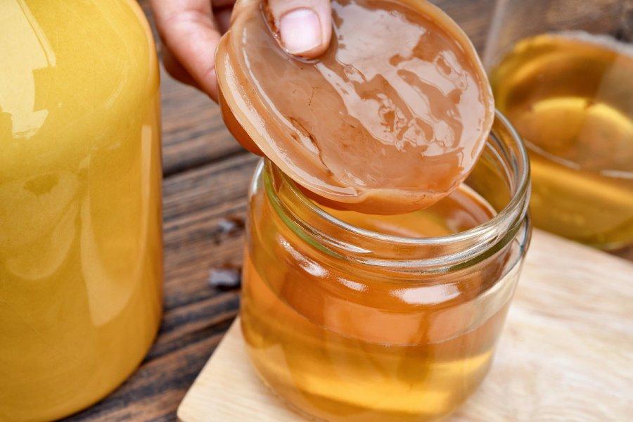 Kombucha - kto powinien pić napar z grzybka herbacianego?