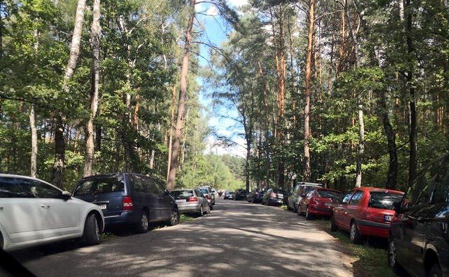 Na parkingu koło Chechła wolne miejsca, a samochody stoją przy drodze (ZDJĘCIA)