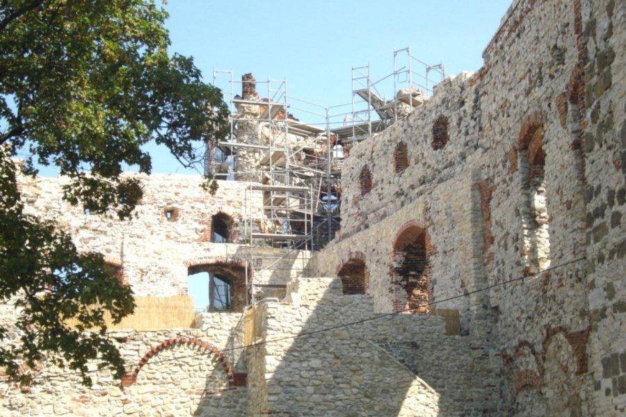 Zabezpieczenia zamku trwają prawie dziesięć lat