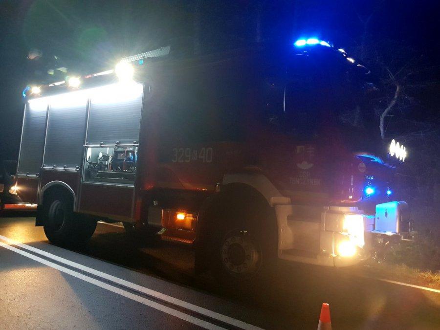 Kierowca zabił dzika na drodze w Tenczynku i uciekł