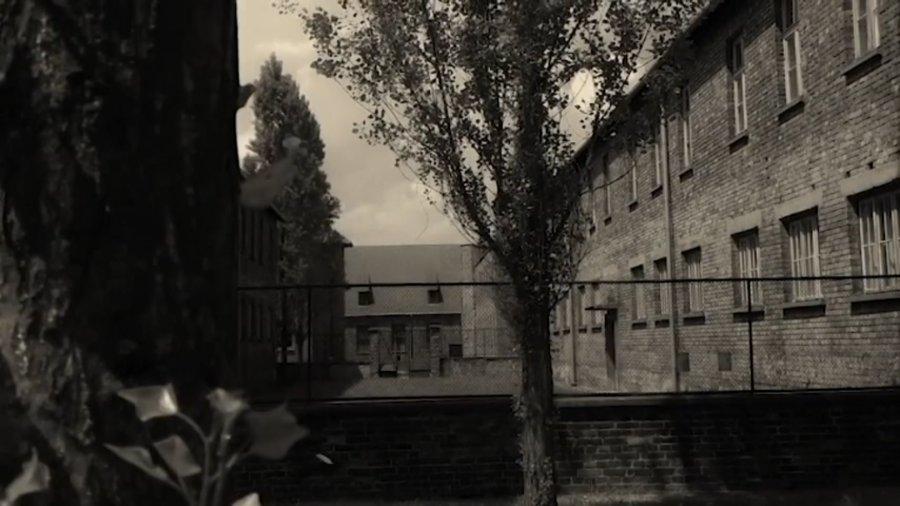 Spojrzenie z Trzebini na Auschwitz (WIDEO)