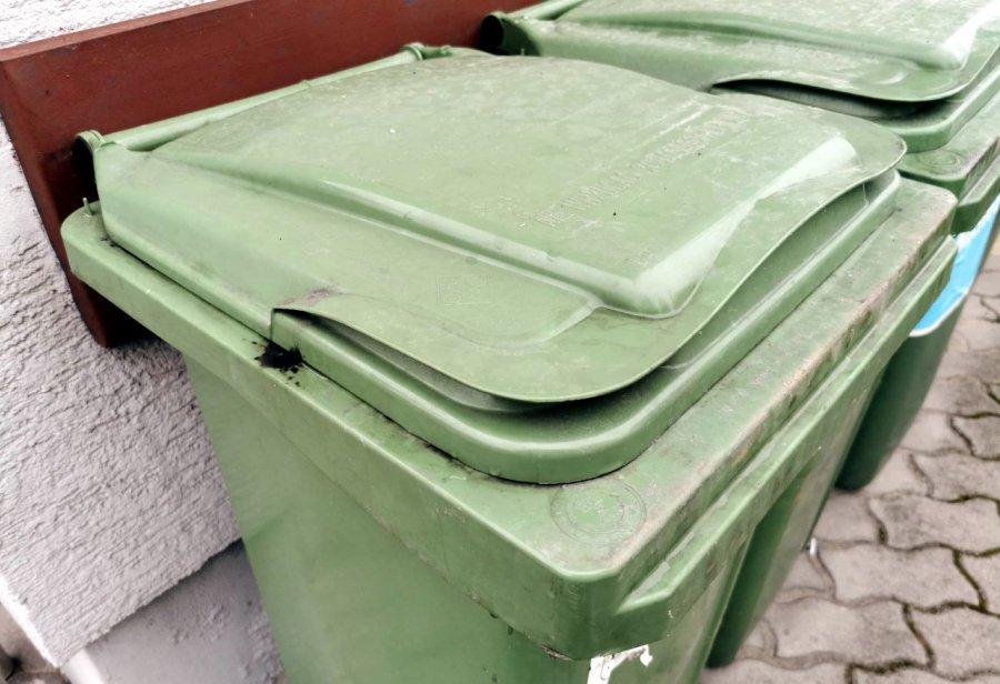Międzygminna spółka może wywieźć śmieci z Babic