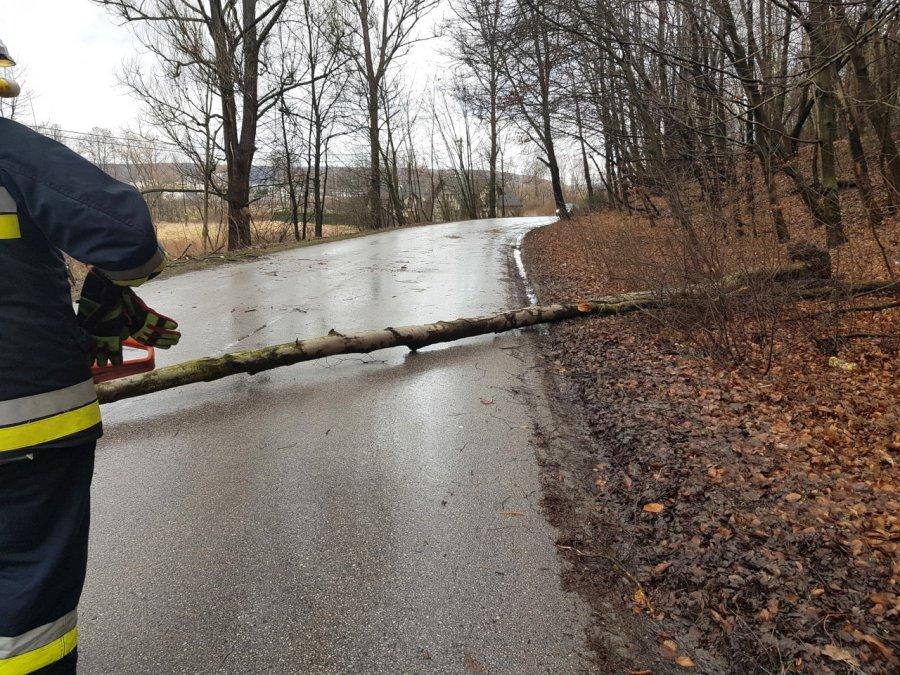Wiatr łamie drzewa (ZDJĘCIA)