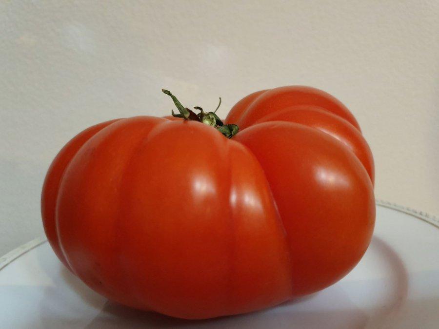 Jak pomidor arbuzowy pokonał na lokalnych straganach pomidora malinowego i ile kosztuje?