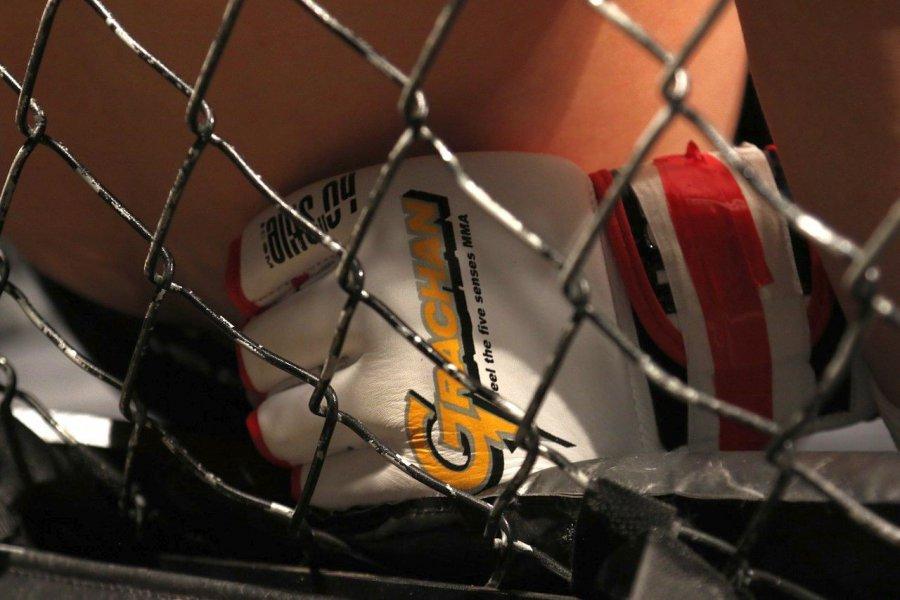 Gala MMA odbyła się w Alwerni. Organizatorzy złamali prawo?