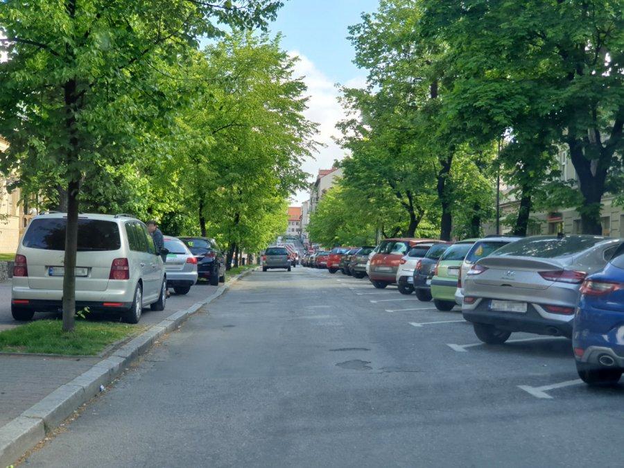 Wolna amerykanka parkingowa na alei Henryka. Czy półkule pomogą?