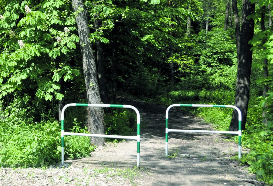 Ekshibicjonista przy ścieżce rowerowej