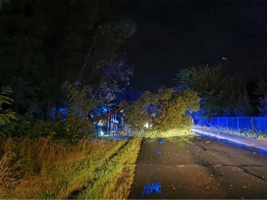 Powalone drzewa na drogach i zniszczony samochód (WIDEO)