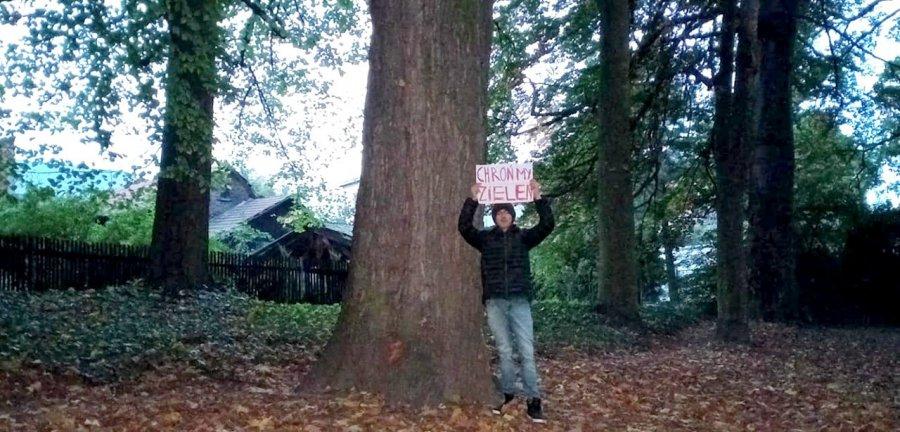Chłopak protestuje przeciwko wycince drzew