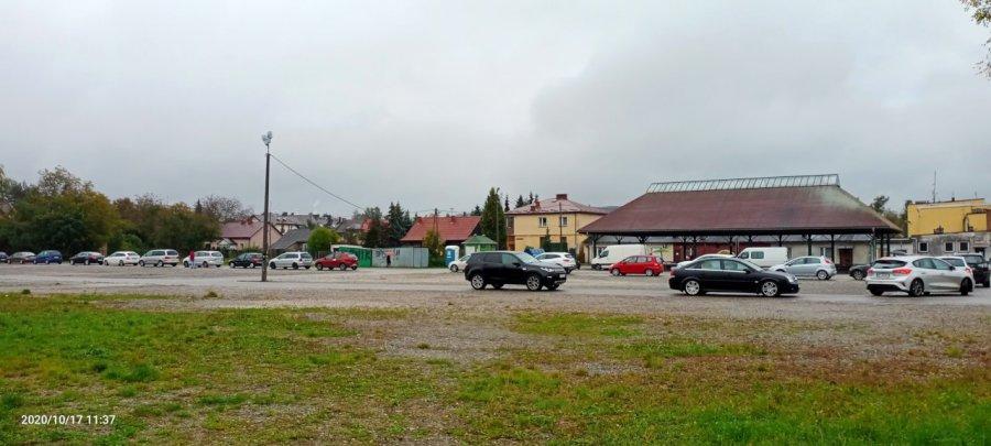 Ogromna kolejka do testów w Krzeszowicach