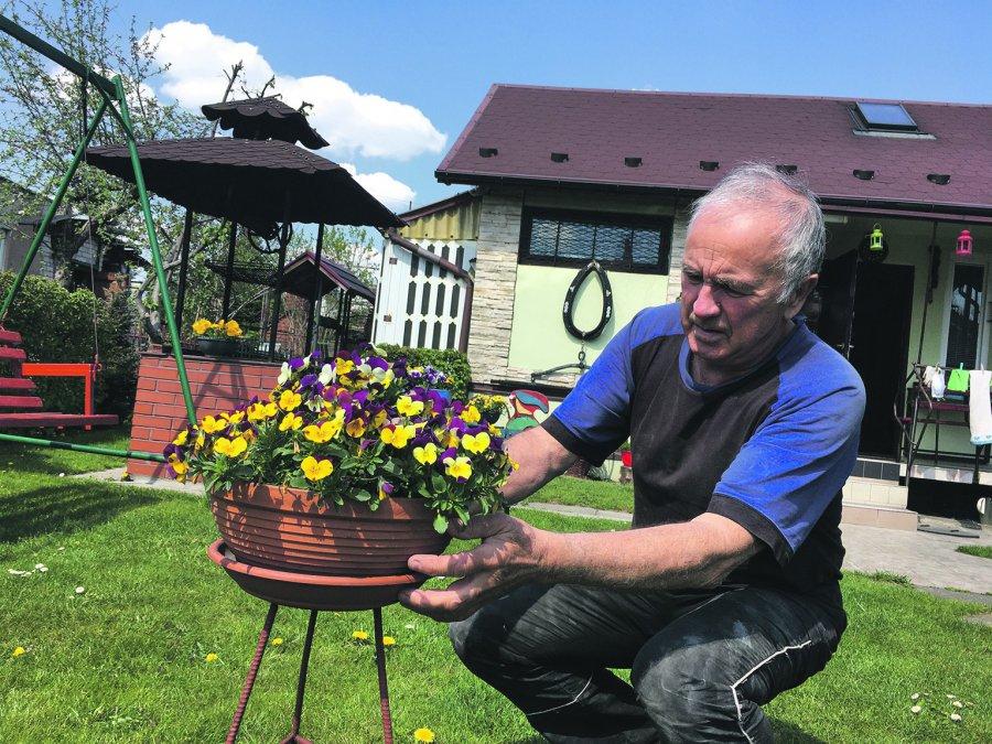 Ogródki - oaza w czasach zarazy