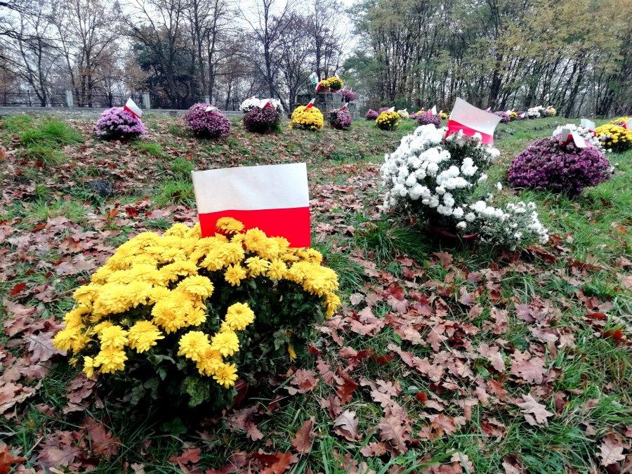 ŚWIĘTO NIEPODLEGŁOŚCI. Chryzantemy dla żołnierzy na cmentarzu z I wojny światowej (WIDEO)