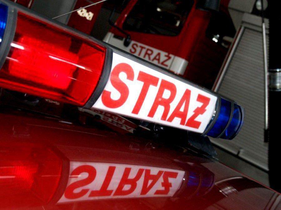 Plama na drodze. 3 zastępy strażaków w akcji