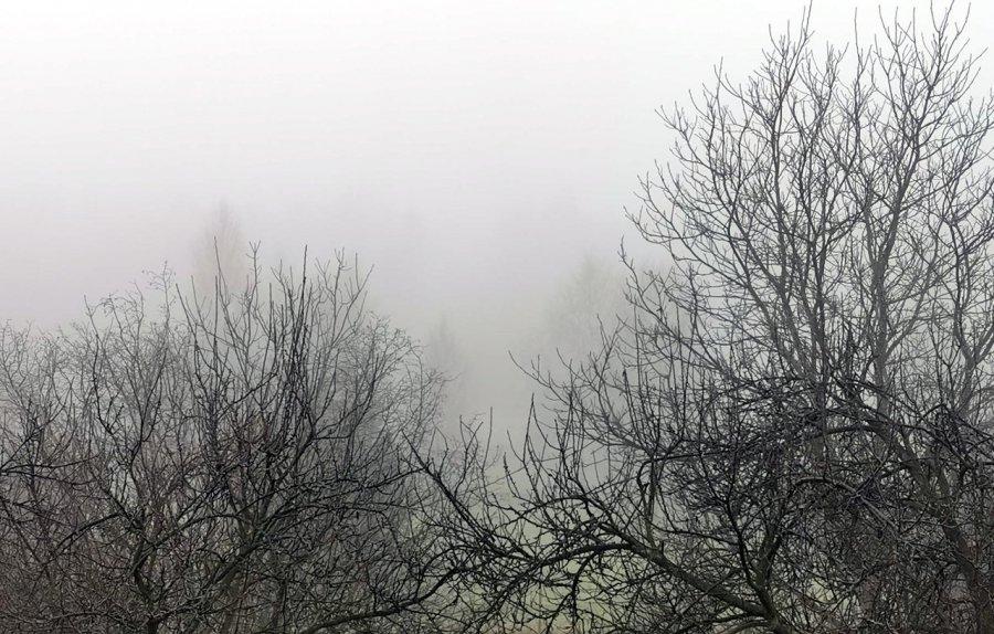 W sobotę i niedzielę uważajcie na gęstą mgłę