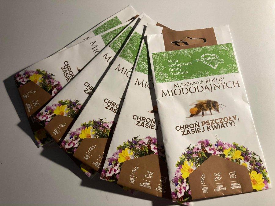 Trzebinia promuje pszczoły i pasieki. Zachęca do stworzenia ogródków miododajnych