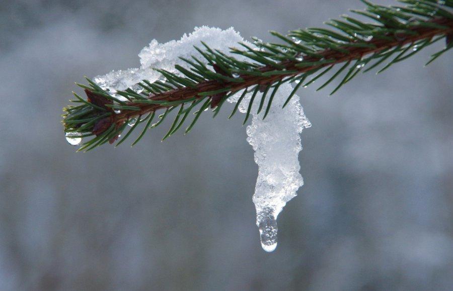 Prognoza pogody. Pora żegnać się ze śniegiem