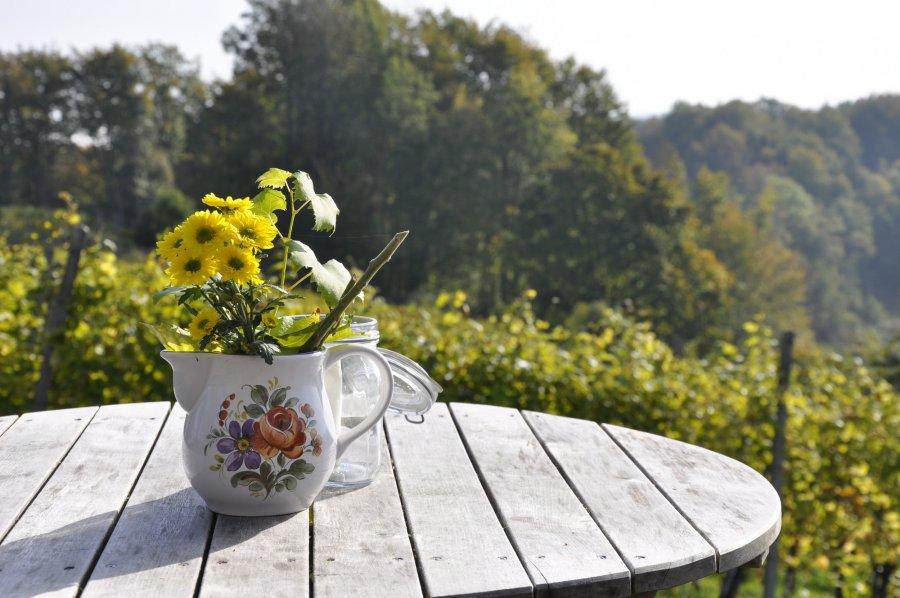 Stół ogrodowy. Stolik ogrodowy Twoich marzeń