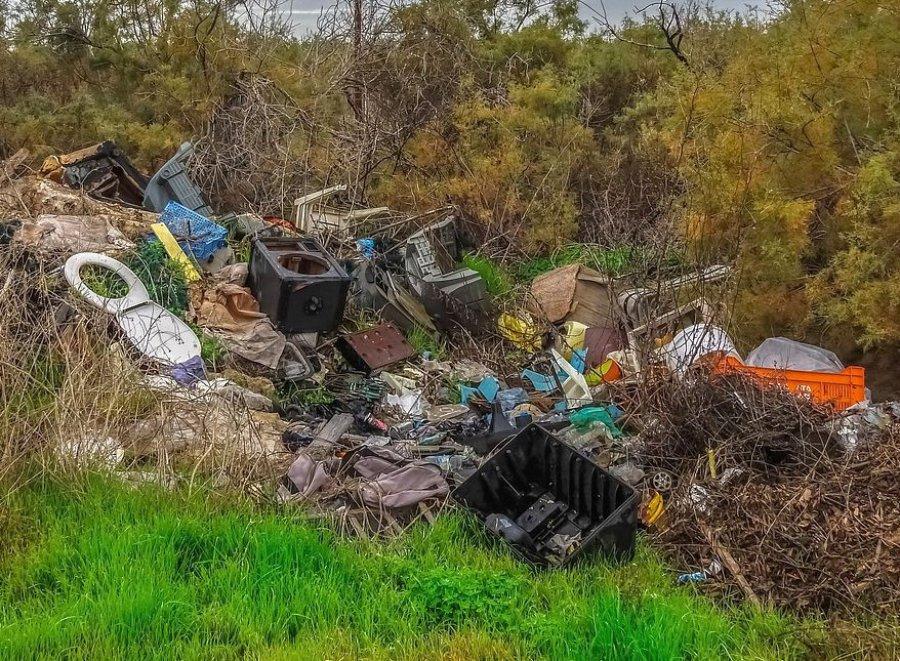 Leśnicy złapali właściciela firmy zaśmiecającej lasy