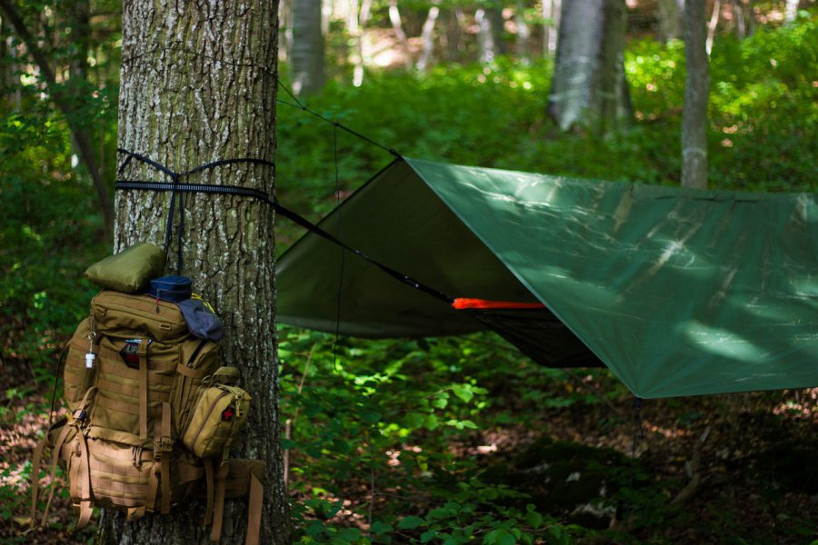 Możecie legalnie zanocować w lesie