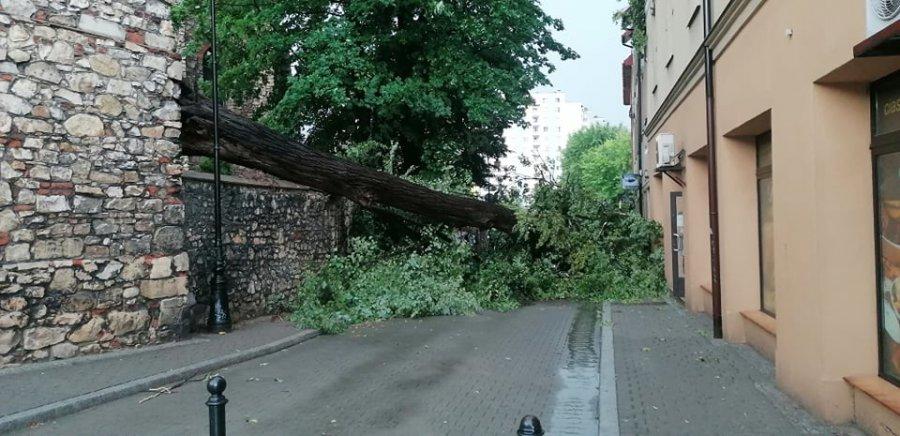 Powalone drzewa, zerwane linie energetyczne. Jest ciężko. Strażacy cały czas interweniują (ZDJĘCIA)
