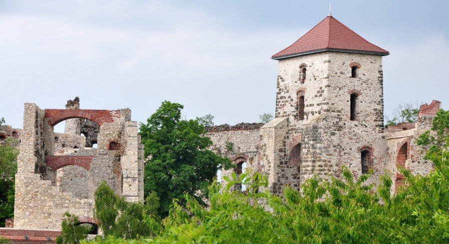 Ruszają wakacyjne kursy autobusowe do zamku Tenczyn i klasztoru w Czernej