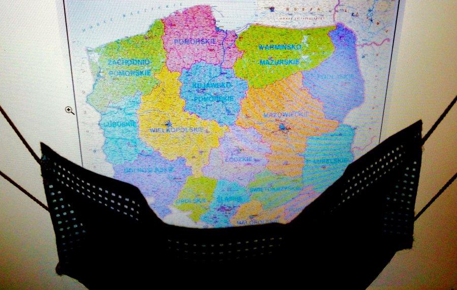 Najwięcej nowych zakażeń koronawirusem jest na Śląsku i w Małopolsce