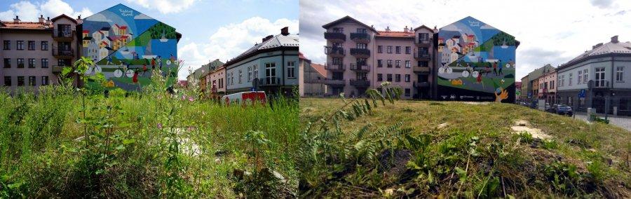 """""""Sianokosy"""" zakończone w centrum Chrzanowa. Widać ekomural! Dało się?"""